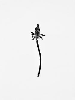 Dandelion #1