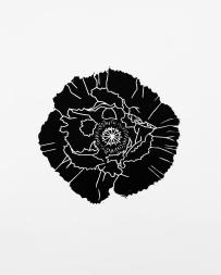 Black Poppy